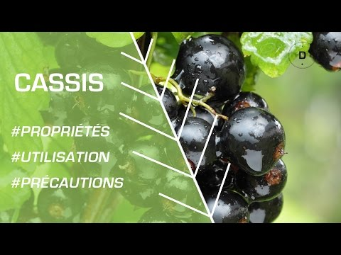 Les traitements du psoriasis par la houille blanche
