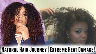 My Natural Hair Journey | Extreme Heat Damage Recovery
