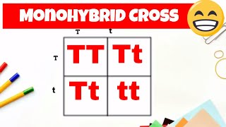 Monohybrid Cross And The Punnett Square