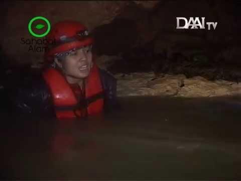 Widi Dwinanda - Sahabat Alam DAAI TV (Goa Seropan Part 1)