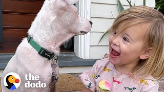 2-Year-Old Girl Convinces Her Mom To Adopt A Deaf Puppy | The Dodo Adoption Day