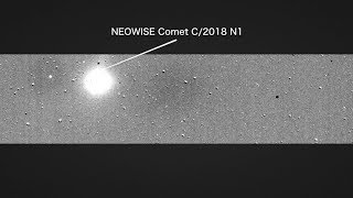 Serendipidade: TESS registra um cometa