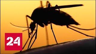 Комары и дроны: как США планируют уничтожать людей? 60 минут от 12.09.18