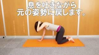 【女性】骨盤矯正エクササイズ
