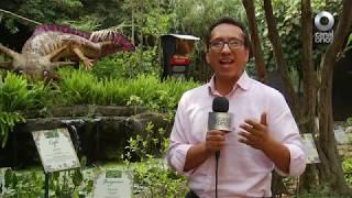 Factor Ciencia - Visitando el zoológico