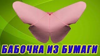 Как сделать бабочку из бумаги. Бабочка оригами своими руками