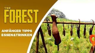 HUNGER & DURST? The Forest Anfänger Tipps [Gameplay Deutsch]