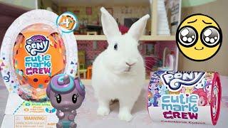 ВАУ 😱 НОВИНКИ My little pony МИЛАШКИ и Кролик Ляля!