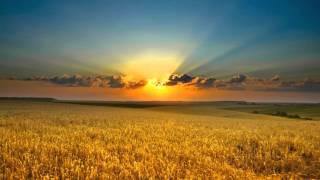 Faithless - Crazy English Summer (Remix)