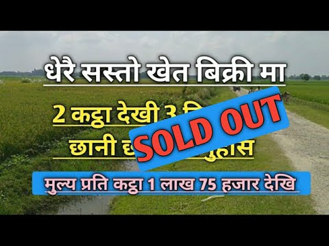 अहिलेसम्मकै सस्तो खेत बिक्री मा | inarwa khet | ghar jagga karobar nepal