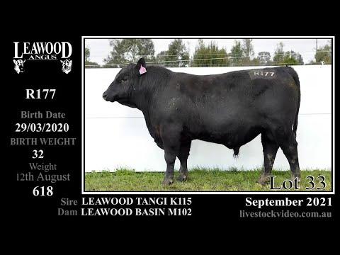 LEAWOOD TANGI R177