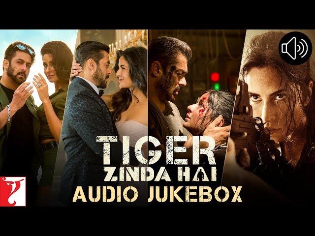 tiger zinda hai you tube song