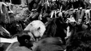 Julian Casablancas+The Voidz - Father Electricity (Official Lyric Film by Jorge M. Fontana)