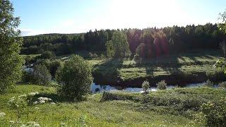одиночный поход Архангельская обл мертвая деревня спиннинг
