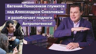 Е. Понасенков глумится над Александром Соколовым и разоблачает подлоги Антропогенеза!