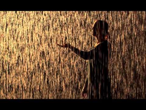 OFF - OFF -  Blázon v daždi