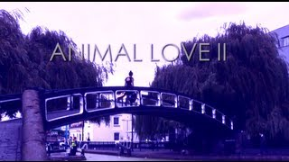 "Postcard Series #6: Charlene Kaye - ""Animal Love II"""
