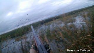Долгожданное открытие охоты на утку в Сибири 2018! Ружье МР-153!