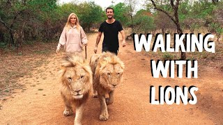 WALKING WITH LIONS | South Africa Safari Travel Vlog (part 2)