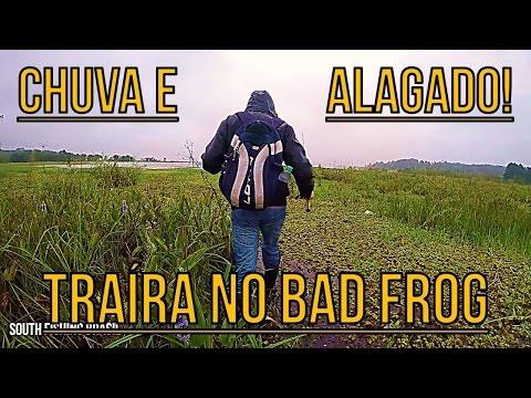 #39 - BAD FROG MATADOR! - PESCA DE TRAÍRA - BAD LINE, GIRINO CMC