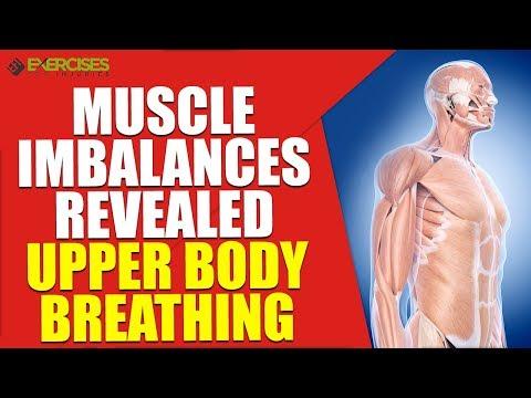 Muscle Imbalances Revealed Upper Body Breathing