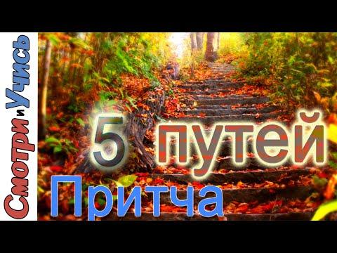 5 мудрецов заблудились в лесу I Притчи I   Философия жизни