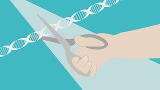CRISPR/CAS9 : une méthode révolutionnaire