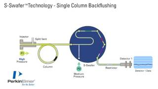 Swafer Single Column Backflushing