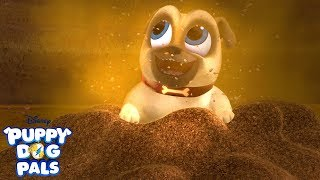 Puppy Dog Pals Songs Dig Free Online Videos Best Movies Tv Shows