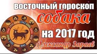 ВОСТОЧНЫЙ ГОРОСКОП СОБАКИ НА 2017 ГОД ОТ АЛЕКСАНДРА ЗАРАЕВА