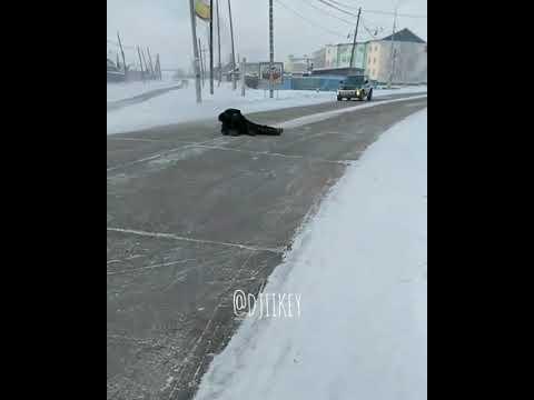 В Якутии мужчина разлегся на проезжей части