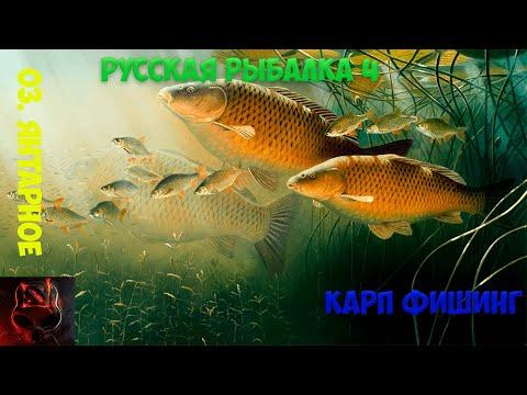 Русская рыбалка 4. оз. янтарное фарм. +трофеи