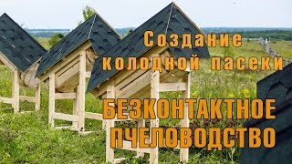 Установка колодной пасеки. Колодное пчеловодство.
