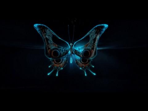 """группа фабрика """"Бабочки"""""""