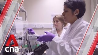 New research group to explore challenges in cell therapy