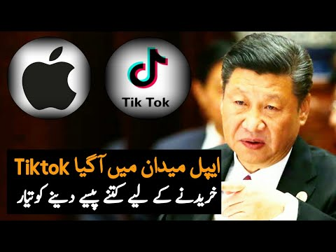 Apple Want To Buy Chinese App Tiktok | Tiktok Ban | America | China | America China Latest News