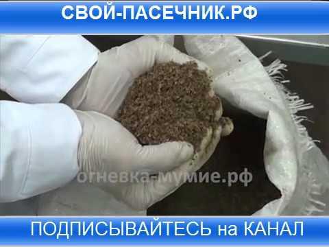 Вакцина гепатит в украина