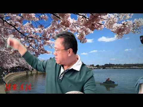 """妄议在日本成立爆料中心和郭文贵的原则""""郭七条"""
