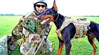 고도 14,500피트에서 뛰어내리는 개