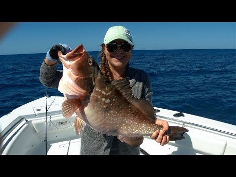 Grouper offshore fishing report florida sportsman for Florida sportsman fishing report