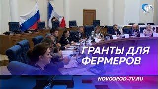 На поддержку начинающих новгородских фермеров выделено 18,5 миллионов рублей