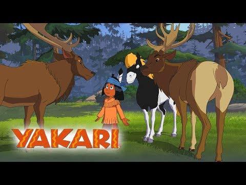 Yakari - Yakari und das Samtgeweih - Folge 30