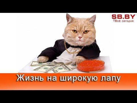 Самый богатые люди в молдавии