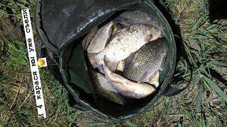 Показать рыбалку на маныче ростовской области