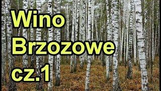 Przepis na wino z soku z brzozy wg Malinowynos.pl