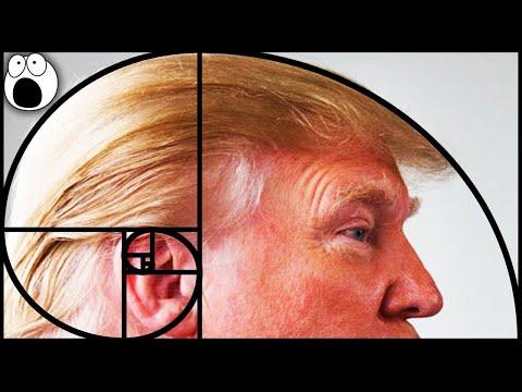 Top 10 Places You Won't Believe The Golden Ratio & Fibonacci Sequence Appears