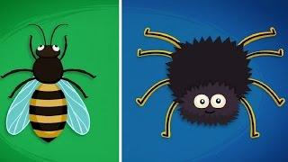 Фиксики - О пауках / Fixiki - cartoons for kids