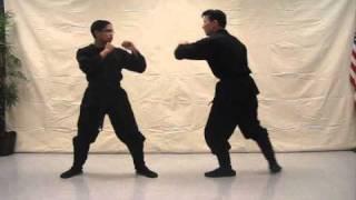 Ninjutsu 忍術 tutorial video (Insert punch) - video #197