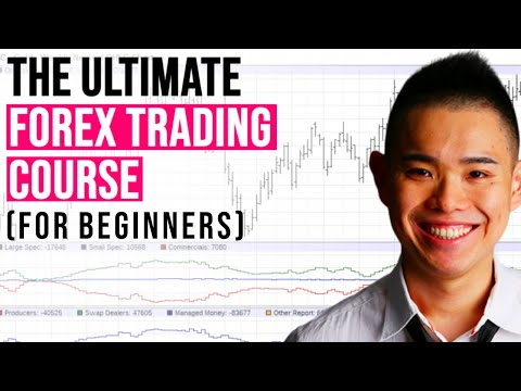 The ULTIMATE Forex Trading Course for Beginners