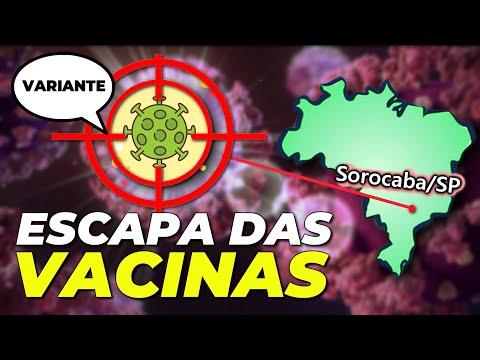 Papillomavírus def
